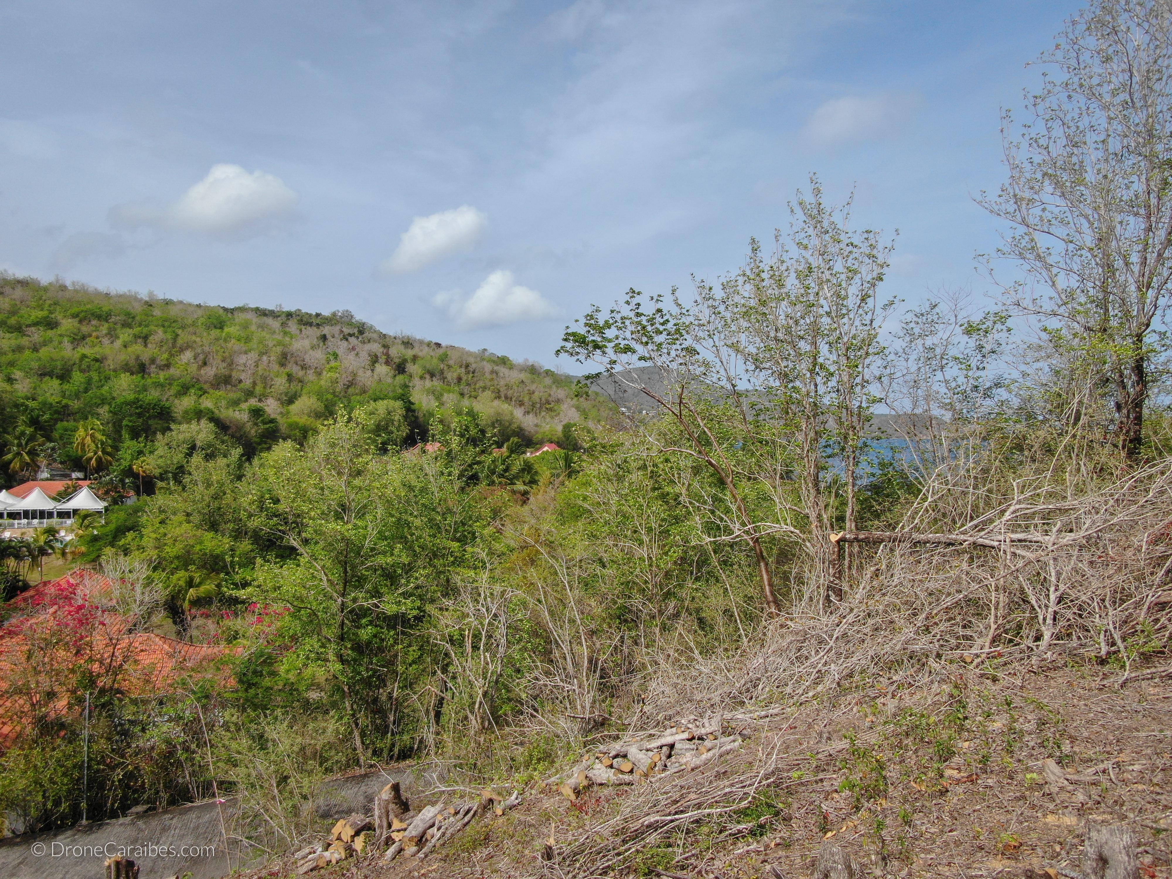 Programme neuf POINTE D'ALET en défiscalisation à Trois-Îlets (Martinique)